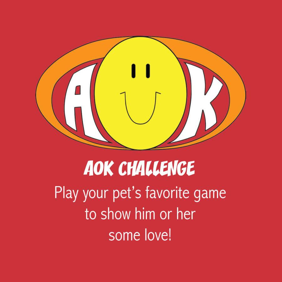AOKChallenge_PetsFavoriteGame.jpg