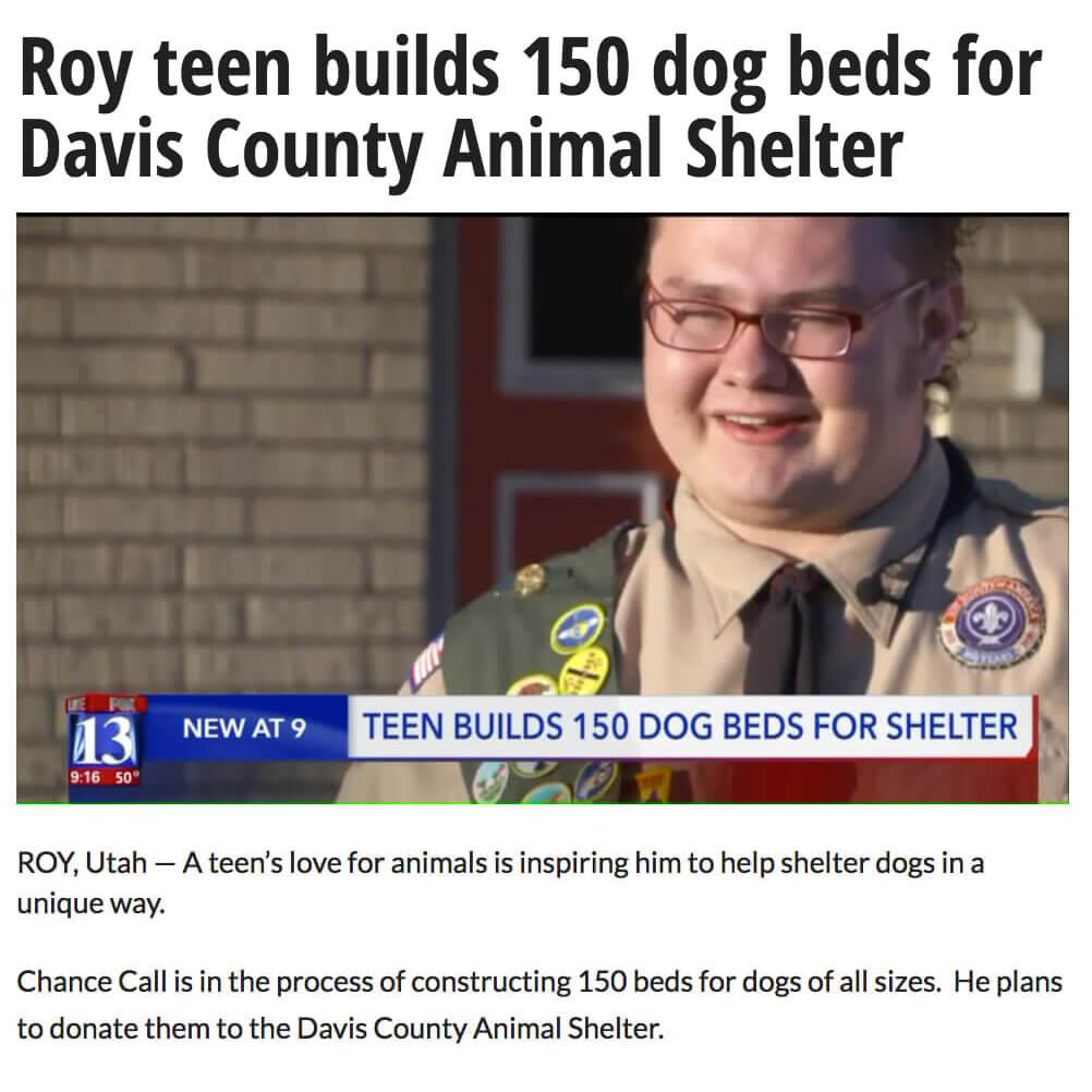 Teen Builds 150 Dog Beds