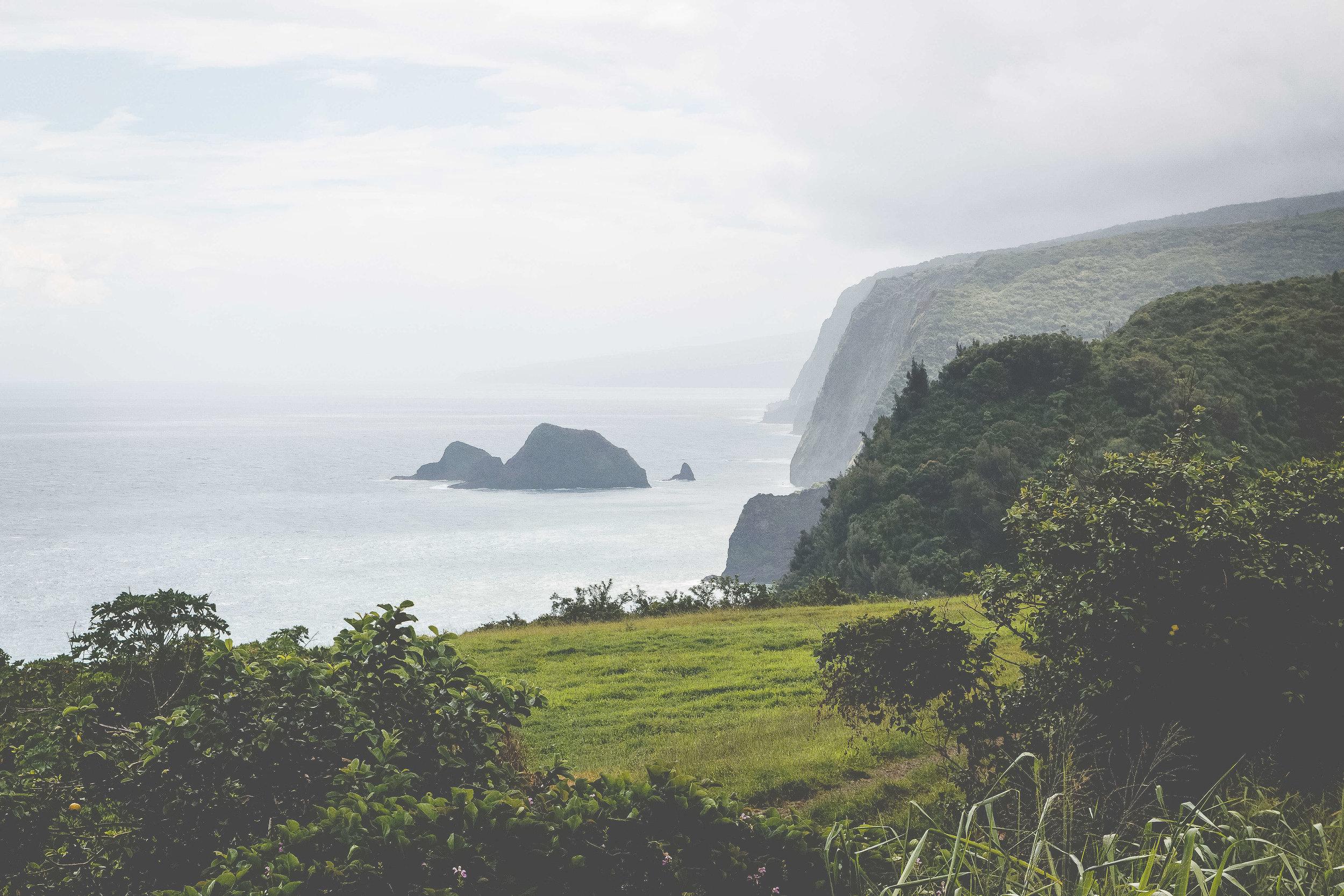 Big island Pololu Valley hawaii photography Family Photographer.jpg