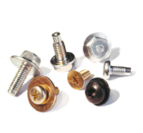 Bolt & Screw Assemblies