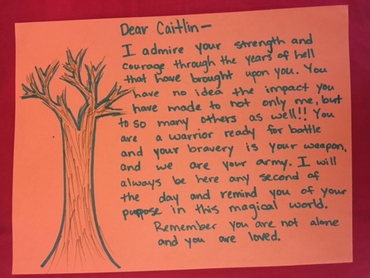 Dear Caitlin–  I admire your strength and courage through the years of hell that have brought upon you. You have no idea the impact you have made to not only me, but to so many others as well!! You are a warrior ready for battle and your bravery is your weapon, and we are your army. I will always be here any second of the day and remind you of your purpose in this magical world.  Remember you are not along and you are loved.