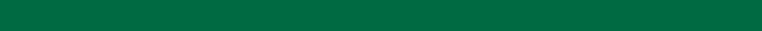 Green bar.jpg