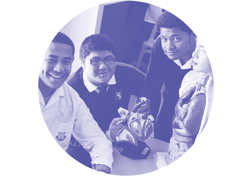 The Sorensen Pacific Health Scholarship - –$5,000 per awardAwarded to a Pacific male and female student of the Otahuhu College STEM Programme.