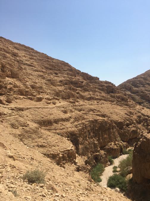 Wadi Qelt.png