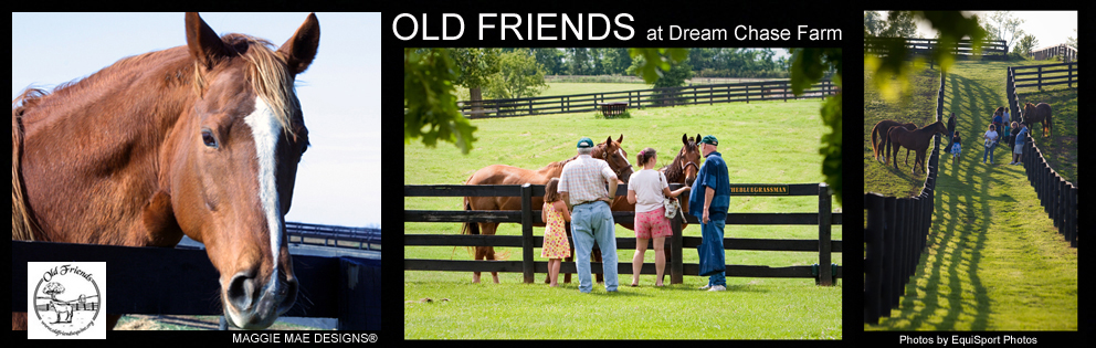Old Friends - Looking for more hands on horse fun? Old Friends is the place to visit for retired race horses. Pet and feed horses from your average mare to retired champs!http://www.oldfriendsequine.org/
