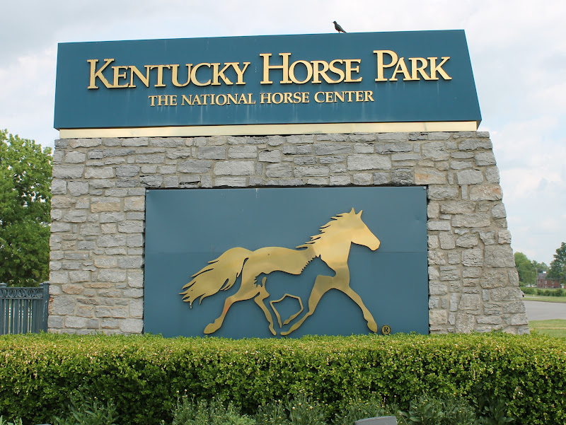 Kentucky Horse Park - A great place to go to see horses of all breeds from around the world as well as a fantastic (and air conditioned) museum!https://kyhorsepark.com/