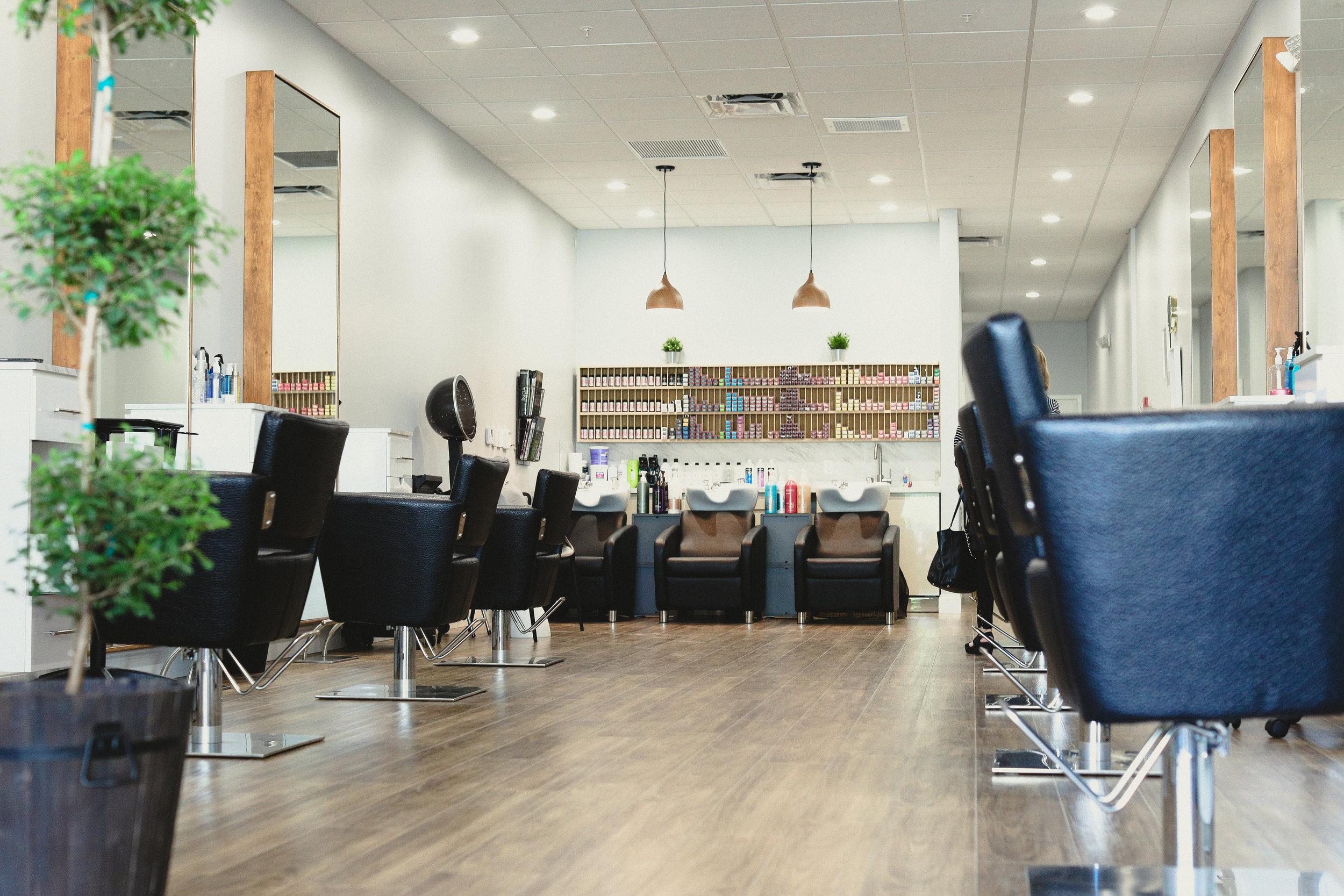 Main Salon Area.