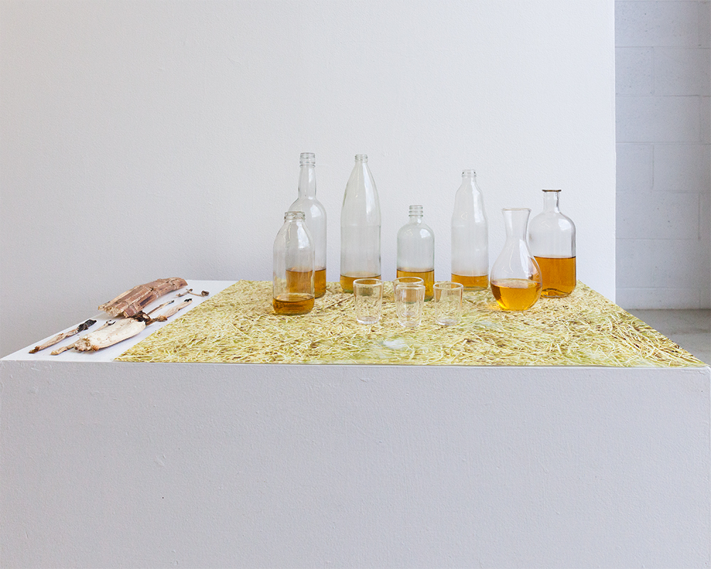 """""""Nabanglo a lamisaan / Aromatic table"""" 2018, Rebecca Maria Goldschmidt"""