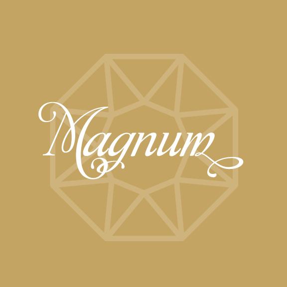sponsor magnum.png