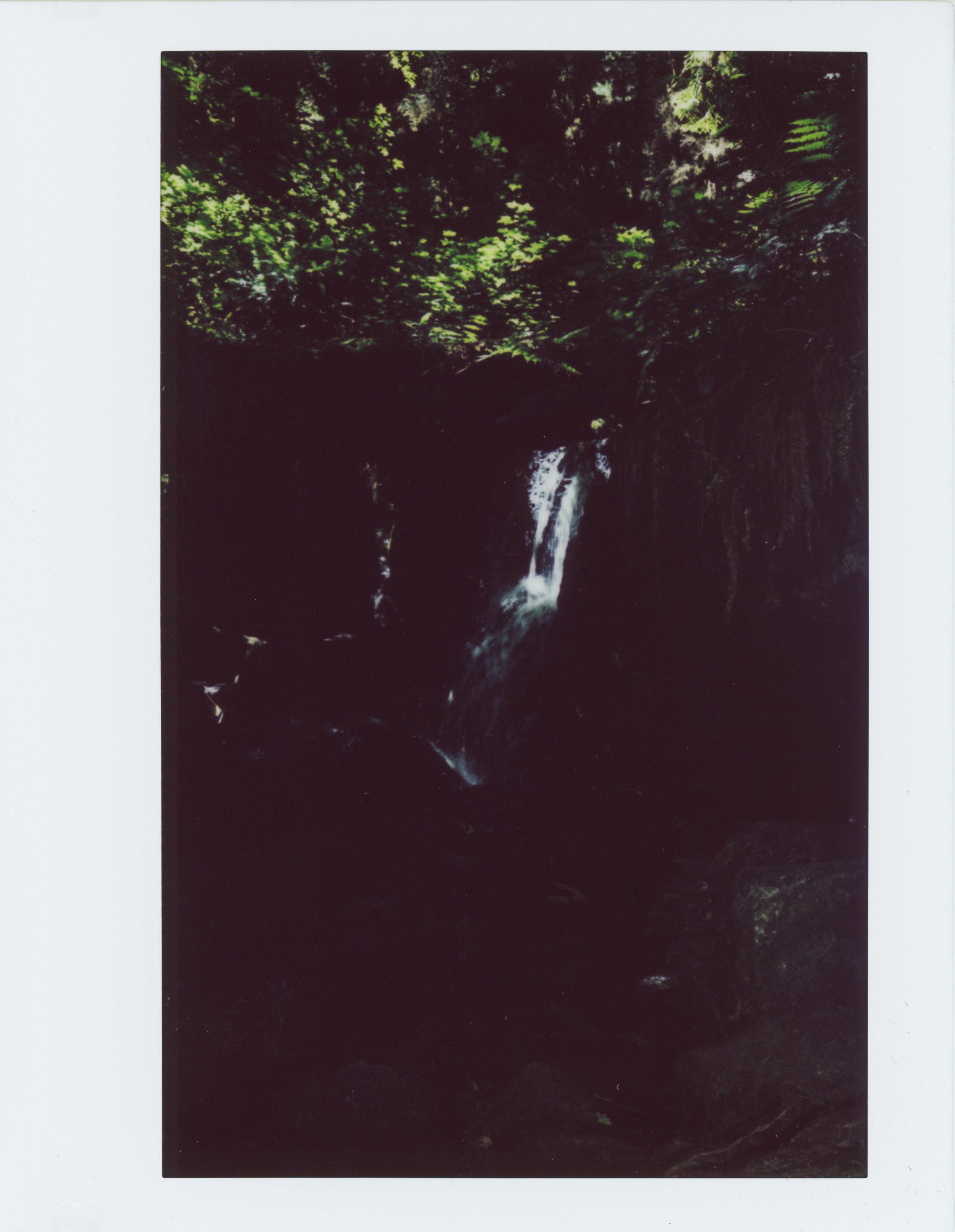 Trillium Falls