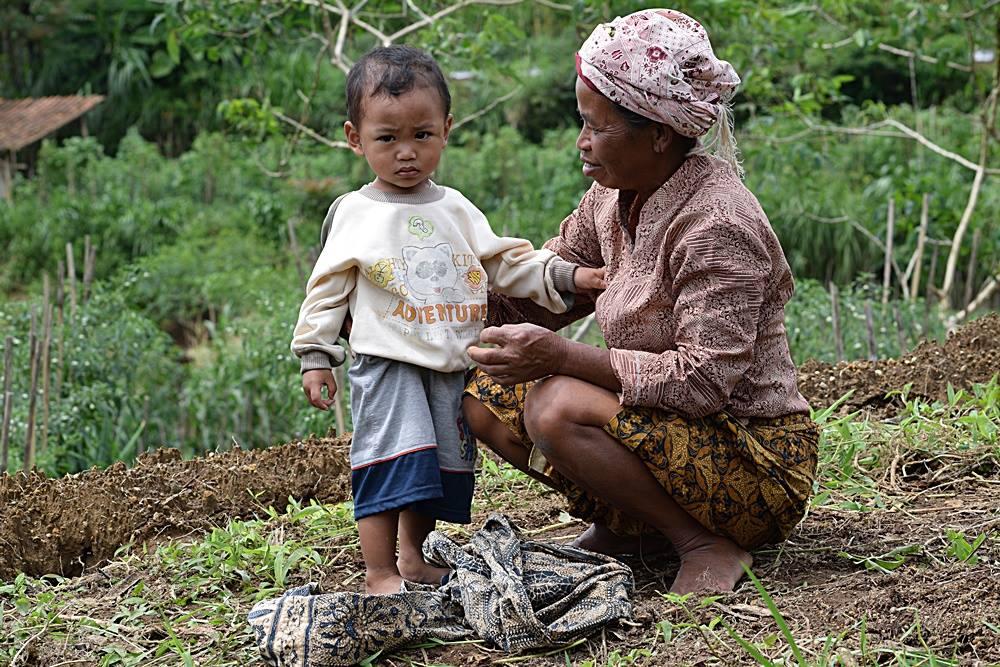 Membawa anak-cucu ke lahan adalah regenerasi kaum tani / Children joining in the fields are a key to continuing farming life