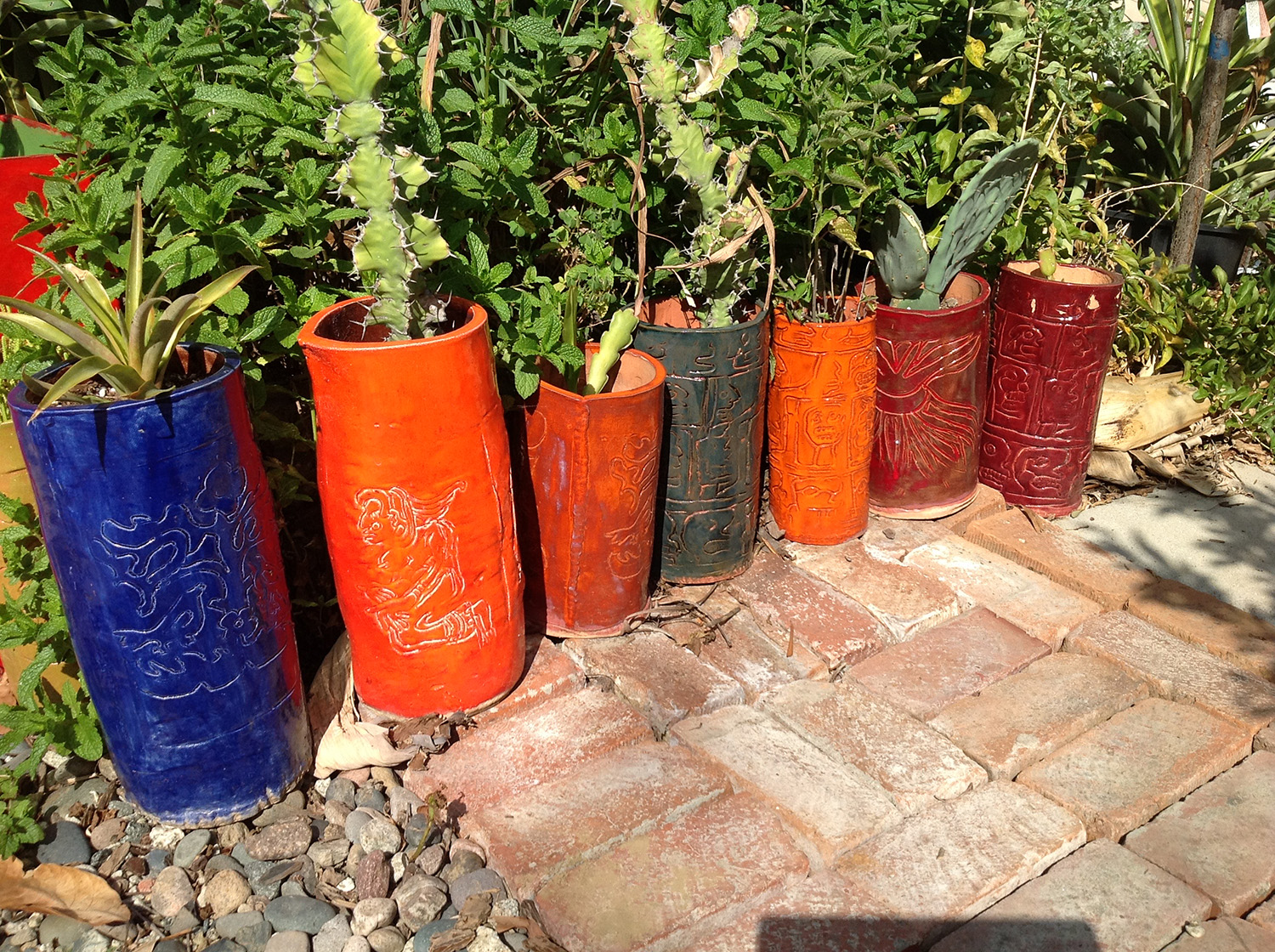ceramic vessels holding cactus collection