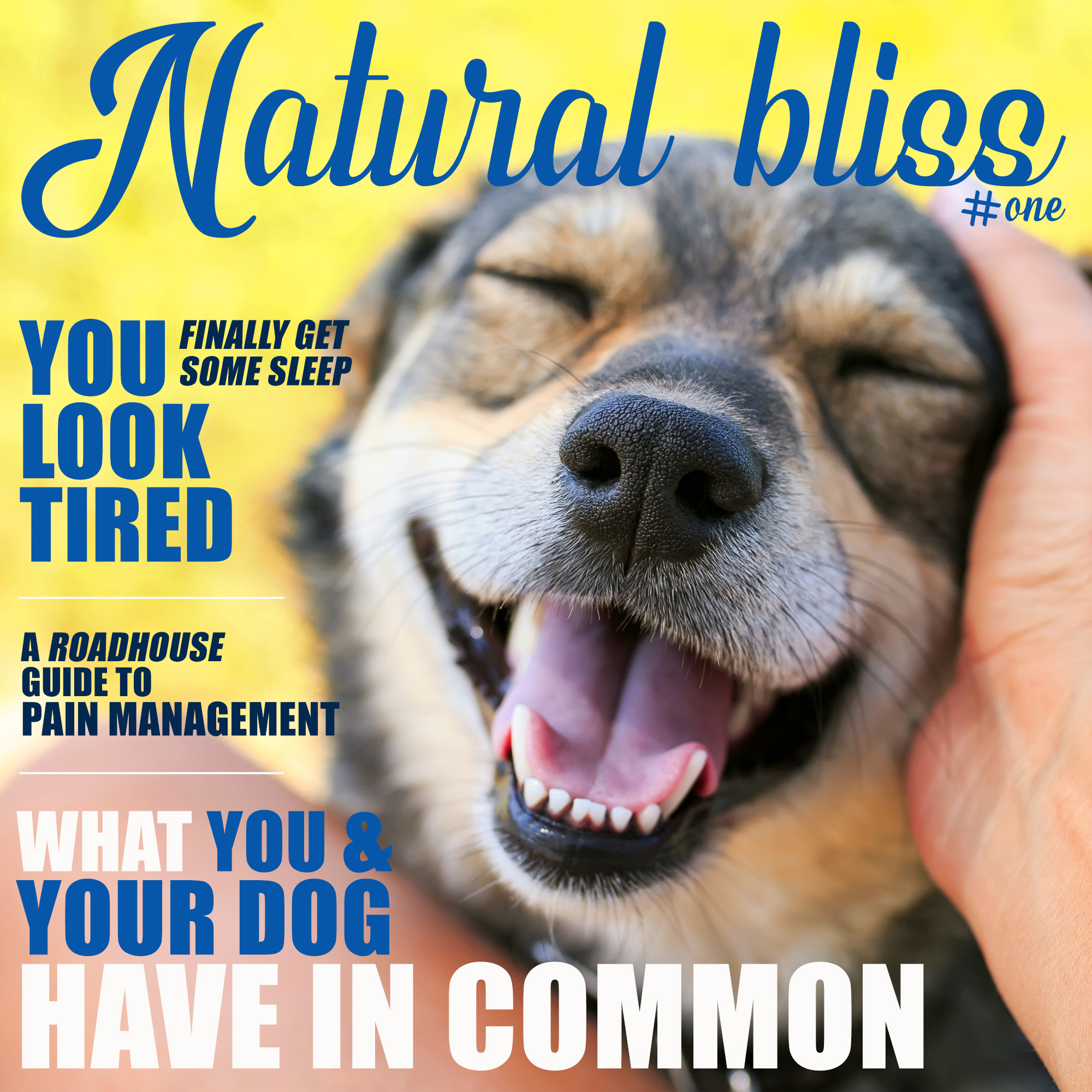 CHECK OUT OUR NEWEST MAGAZINE! CLICK TO READ