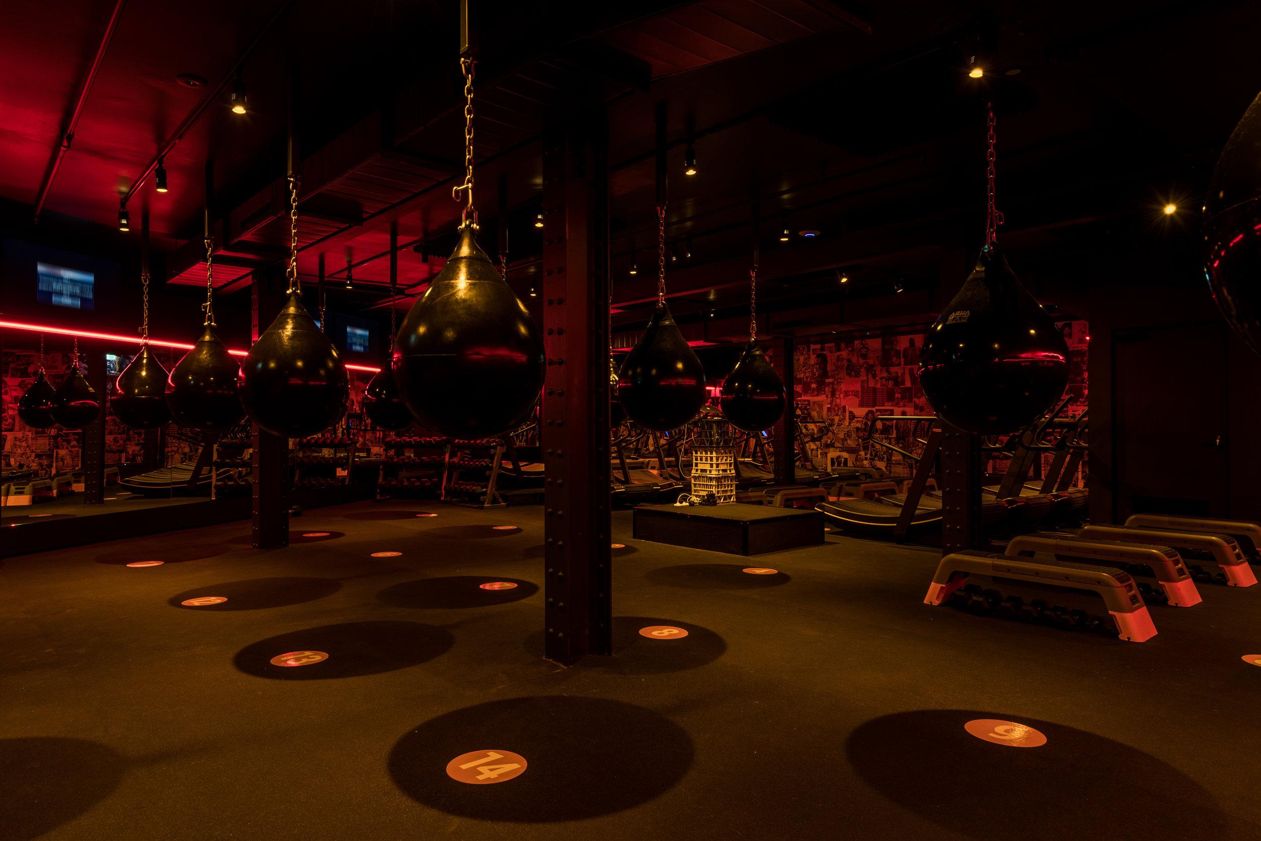 MF-Undercard Gym-4.jpg