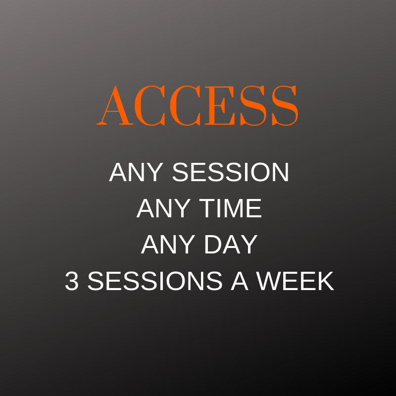 Semi Private Sessions - Click here     Membership Works out to be $19.80 per session
