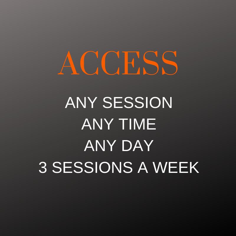 $18 Per Session - Semi Private Sessions - Click here