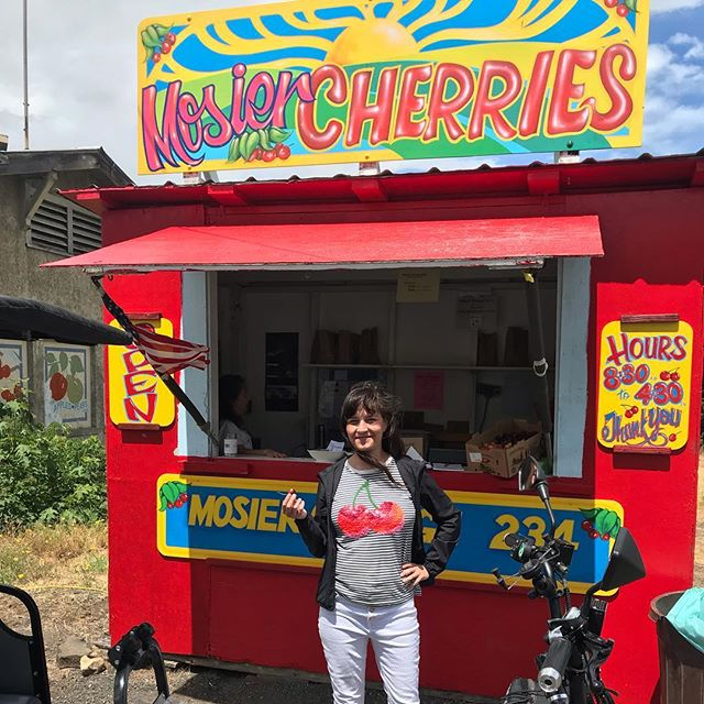 Cherries are on!...and accessible with my chariot.  Took Nellie of Brooklyn, NY on the Twin Tunnels Trail to her Bing cherry pickin' delight at Idiots Grace this afternoon.  Mosier welcomed us with curiosity and kindness. Brenna's Market started up around the same time I did, so we had an impromptu high five celebration of our one year anniversaries.  Come get your pie fixins on the pedicab! @idiotsgracewines @mosiermarket . . . . . . #twintunnels #cherrypicking #idiotsgracewinery #mosiermarket #mosier #hoodriver #hoodriveroregon #columbiariver #columbiarivergorge #traveloregon #pedicab #pedicablife #pedicabs  #pedicab4life #pedicabvibes #pedicabride #greenliving #ssupportlocalbusiness #gorgeowned #uberalternative #localbusiness #visithoodriver #hoodgorge #pnwlife #pnwonderland #columbiagorgous #mthoodterritory #pnwdiscovered #pnwonderland #columbiagorgous #mthoodterritory #pnwdiscovered