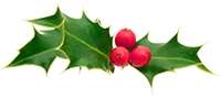 holly_Dec18_small.png