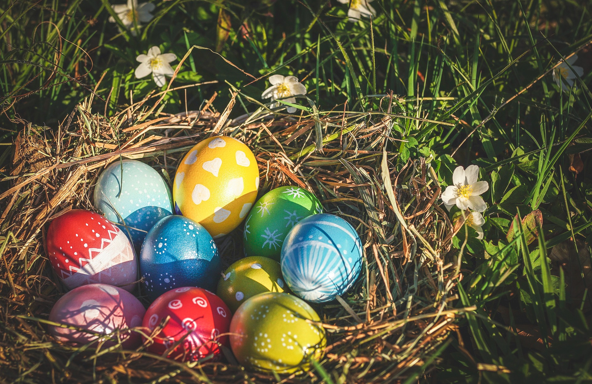 painted easter eggs in a nest outdoors