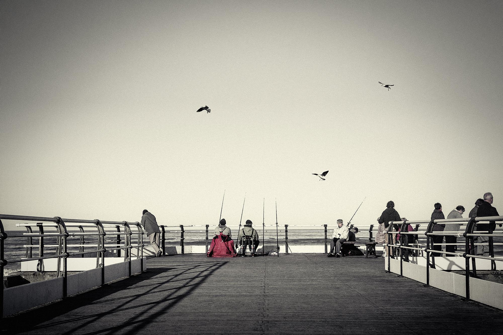 Three Birds_2 Saltburn