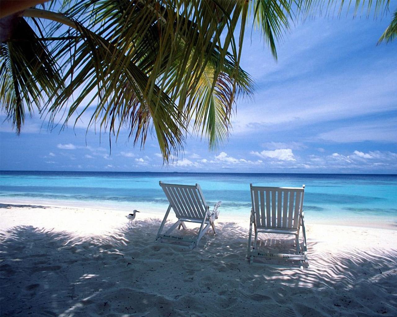 Beach Chairs.jpeg