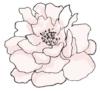 EA_flowerWEB.jpg