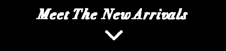 meet_the_new_arrivals.png