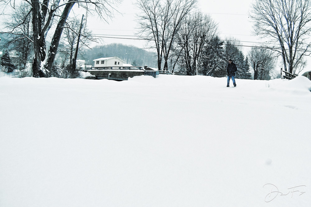 20140101_365_Project_Year_2_Day_037.jpg