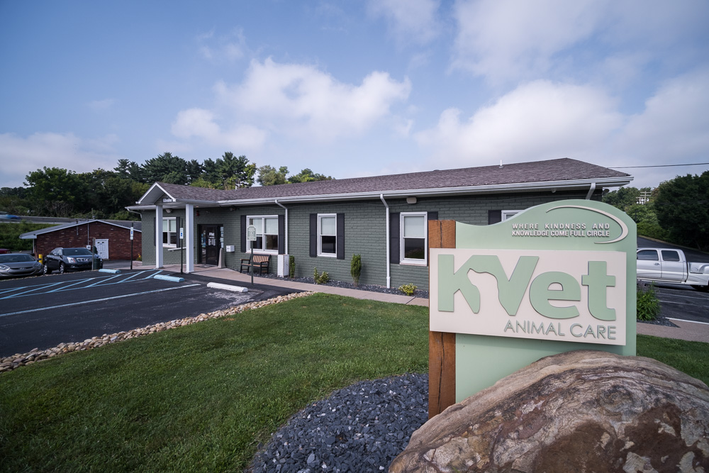 KVet_Animal_Care_And_Cabin_Spa_01.jpg