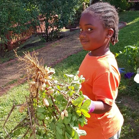 Barrett_ELC_gardening_peanuts.jpg