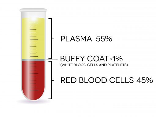 Blood-Components-510x382.jpg