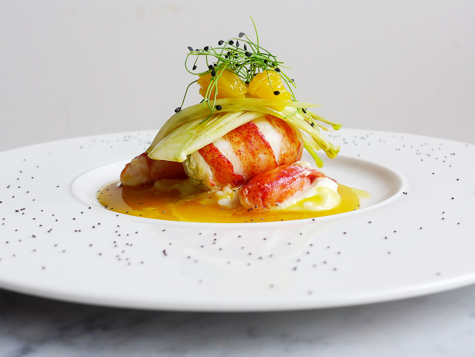 lobster with a citrus sauce and scallion sprouts.jpg