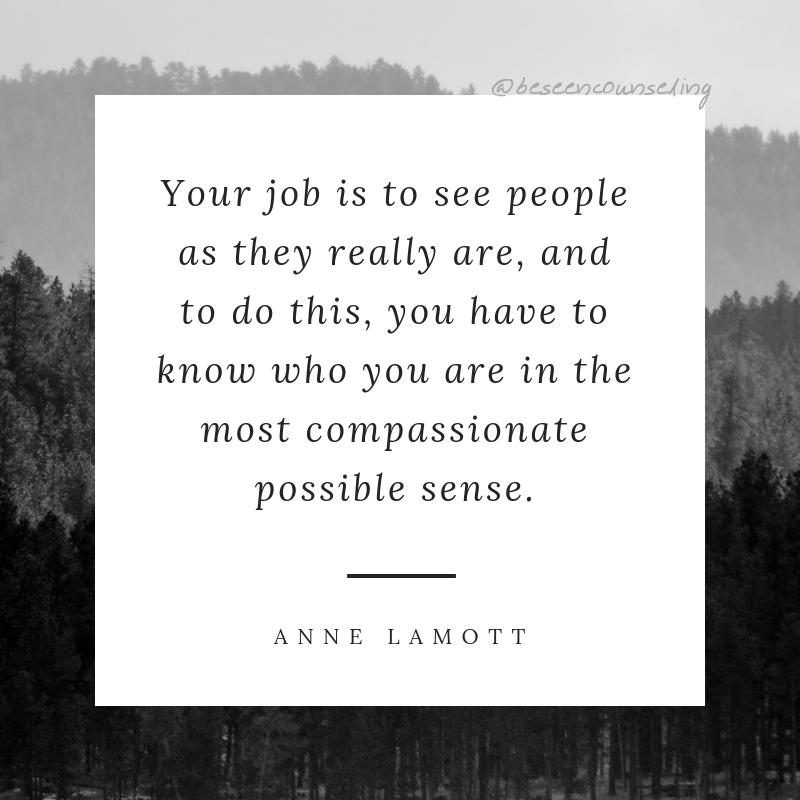 Anne Lamott Bird by bird Quote p. 97-98-3.png