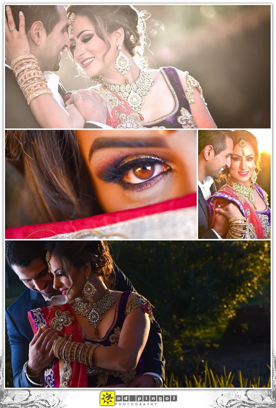 Napa Indian Wedding 4