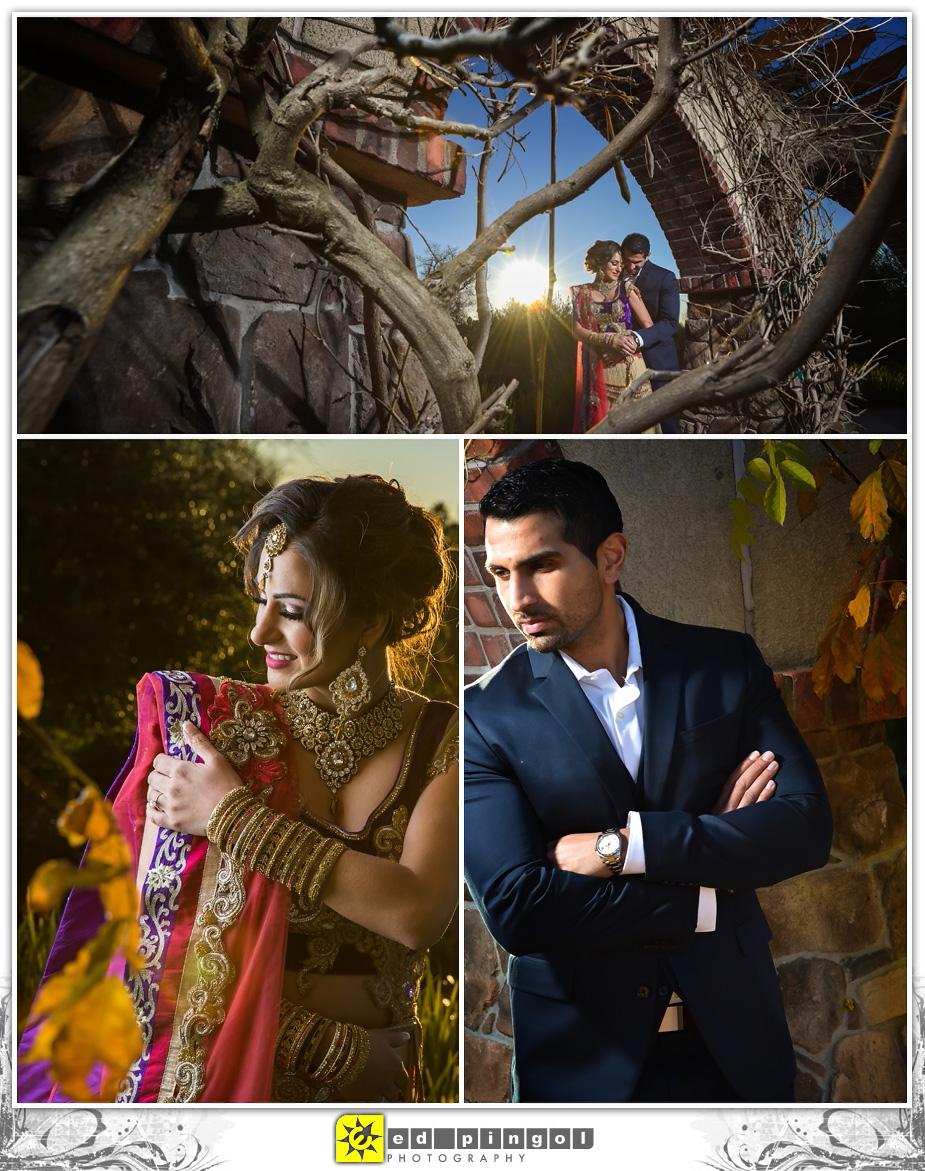 Napa Indian Wedding 6