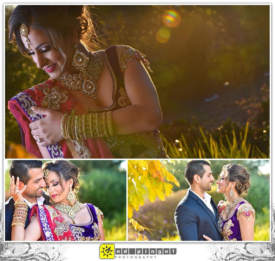 Napa Indian Wedding 7