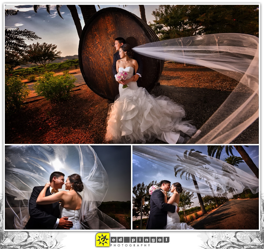 Palm Event Center Wedding 4