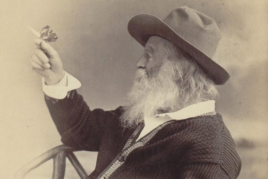 Walt Whitman.png