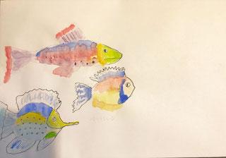 Fish-env.jpg