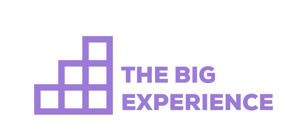The Bix Experience Logo
