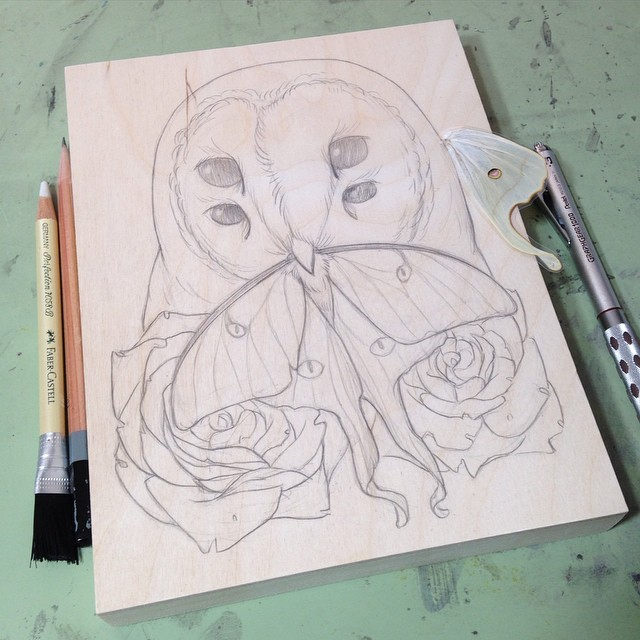 2015 barn owl with luna moth wip.png