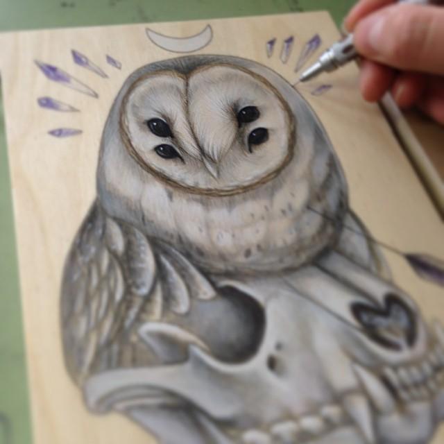2014 barn owl with raccoon skull wip.png