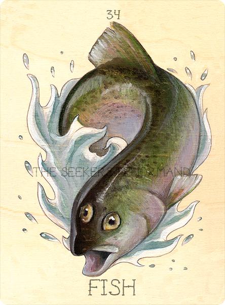 34 fish, 2016.