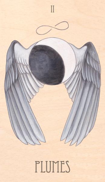 ii of plumes, 2014.