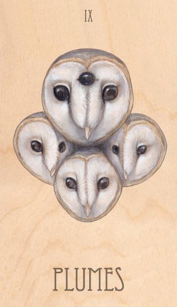 ix of plumes, 2014.