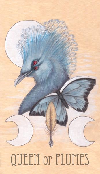 queen of plumes, 2014.