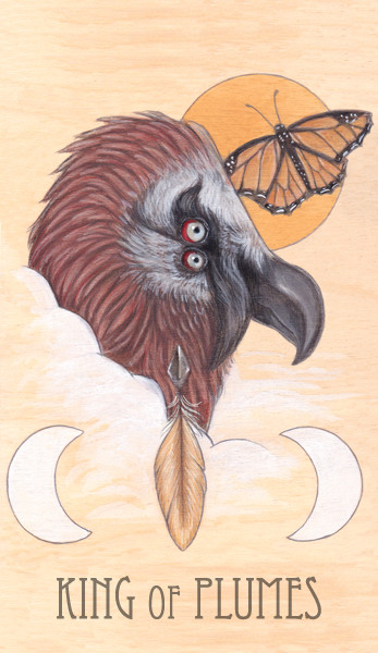 king of plumes, 2014.