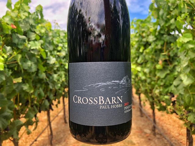 A taste of Sonoma Coast. #pinotnoir #winewednesday