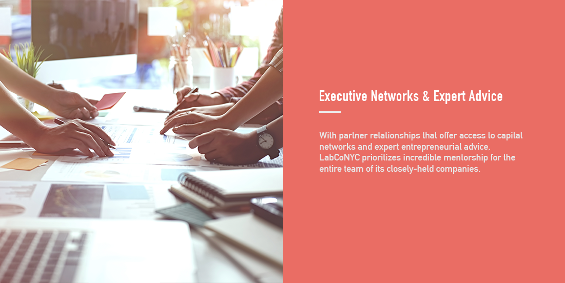 LabCo_Info box_Executive Networks  & Expert Advice.png