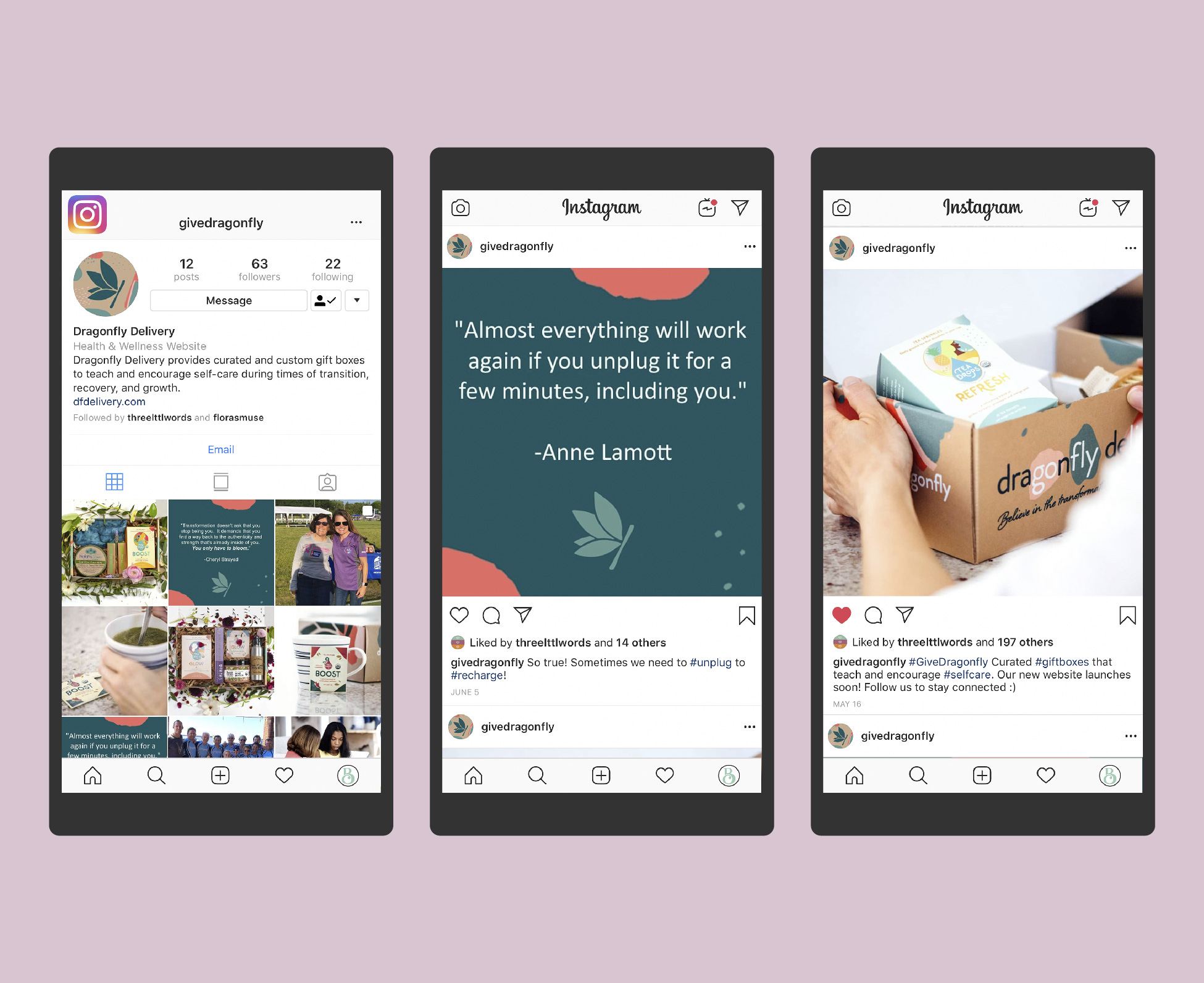 Dragonfly Delivery Instagram Feed Design @givedragonfly